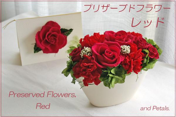 レッド・赤のプリザーブドフラワー
