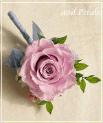 OB38 花束贈呈のブトニア