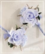 OB43 花束贈呈のブトニア