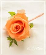 OOR66 花束贈呈のブトニア