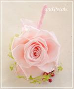 OP34 花束贈呈のブトニア