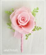 OP68 花束贈呈のブトニア