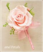 OP119 花束贈呈のブトニア