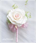 OP49 花束贈呈のブトニア