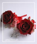 OR2 花束贈呈のブトニア