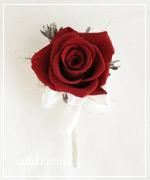 OR18 花束贈呈のブトニア