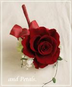 OR52 花束贈呈のブトニア