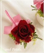 OR56 花束贈呈のブトニア