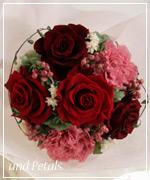OR33 ご両親へ花束贈呈