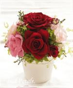 OR55 ご両親へ花束贈呈