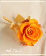 OW150 花束贈呈のブトニア
