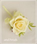 OY49 花束贈呈のブトニア