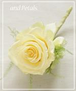 OY33 花束贈呈のブトニア