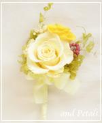 OY56 花束贈呈のブトニア