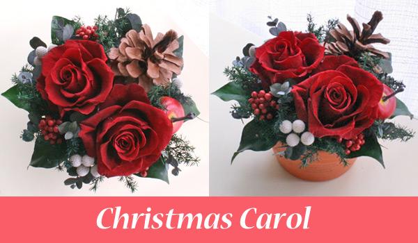赤いバラとテラコッタの花器がナチュラルなプリザーブドフラワーのクリスマスアレンジメント
