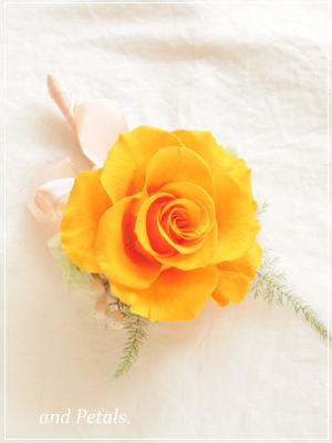 OOR2002 花束贈呈のブトニア
