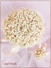 B043 Bridal Veil Bouquet