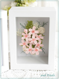 F004 Shell Pink Photoframe Mini