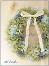 W030 Sirius Wreath Mini